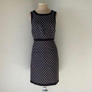 ANN TAYLOR dress NWOT